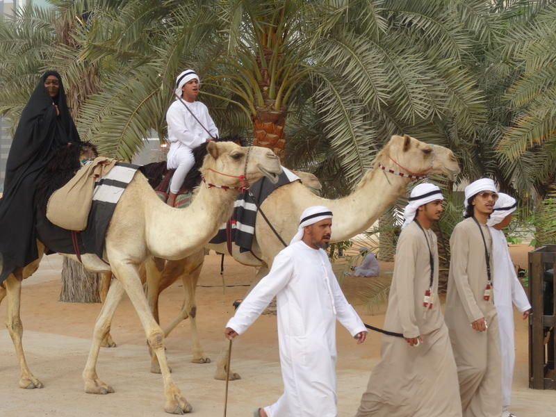 Картинки из жизни арабского сектора. - Страница 3 DSC03991
